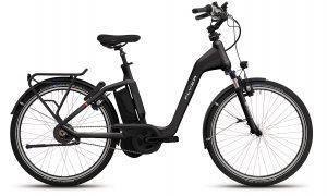 FLYER_E–Bikes_Gotour4_Tiefeinsteiger_schwarz-1.jpg