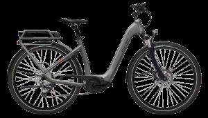 FLYER_E-Bikes_Gotour2_Tiefeinsteigerrahmen_silverdarkcool